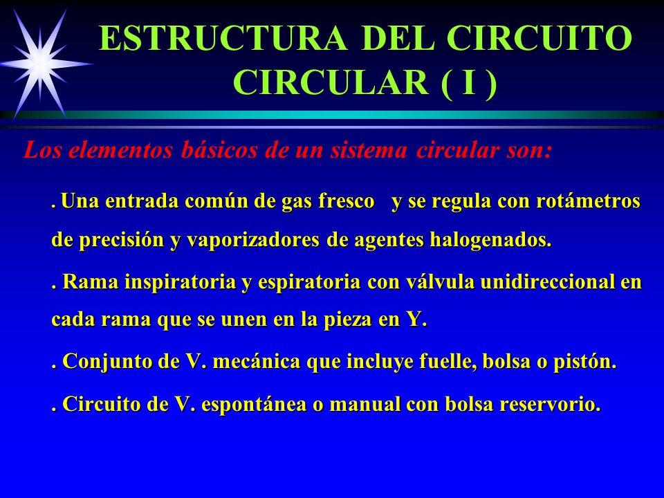 ESTRUCTURA DEL CIRCUITO CIRCULAR ( I )