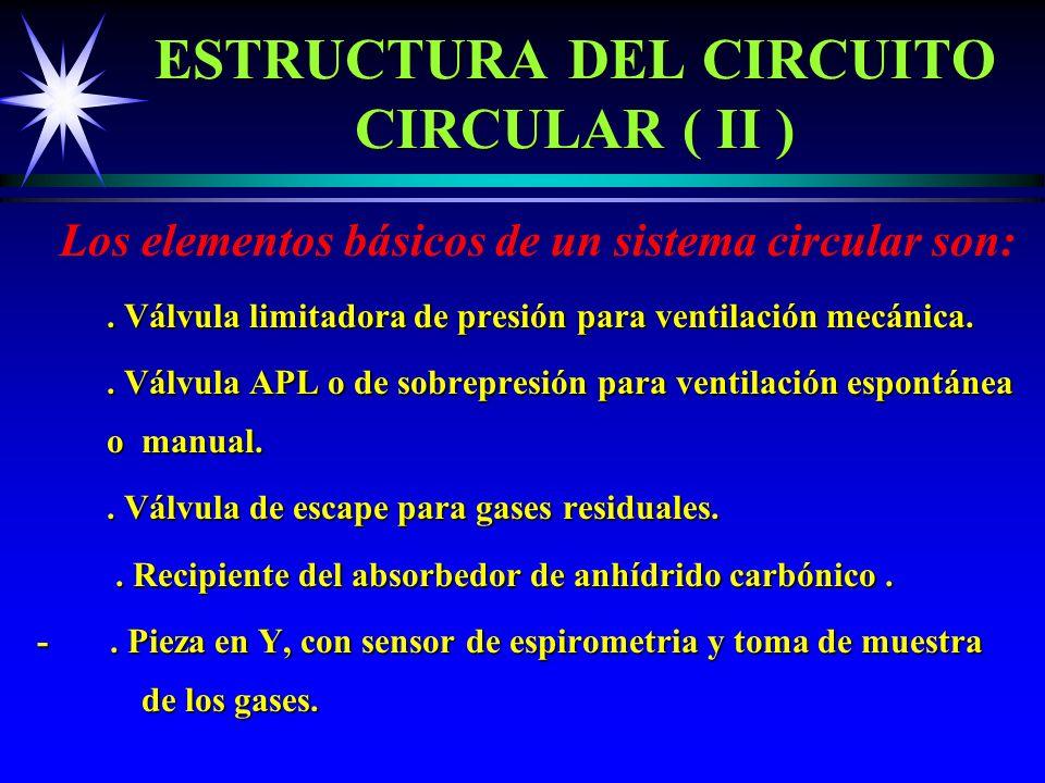 ESTRUCTURA DEL CIRCUITO CIRCULAR ( II )