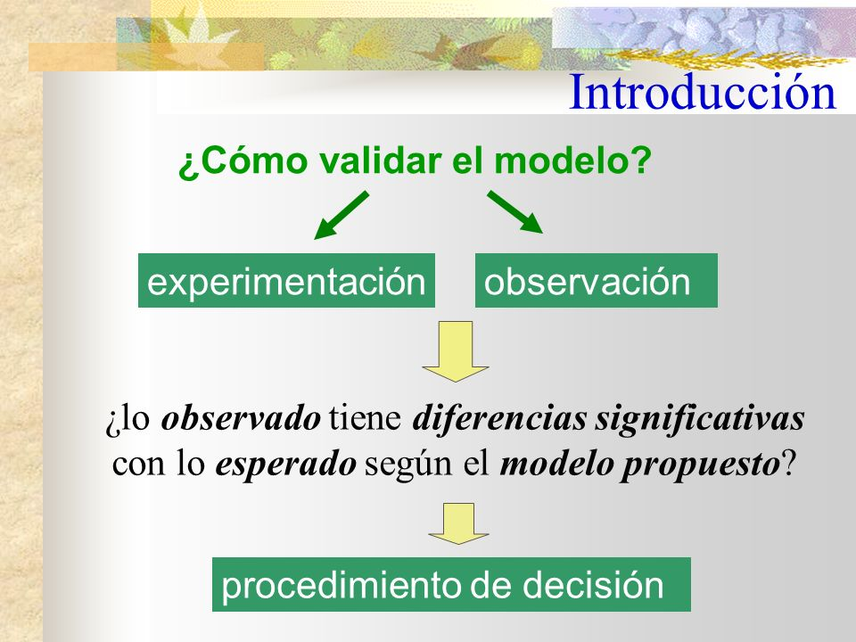 ¿Cómo validar el modelo