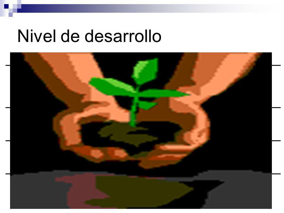 Nivel de desarrollo Nivel Descripción Características D1 D2 D3 D4