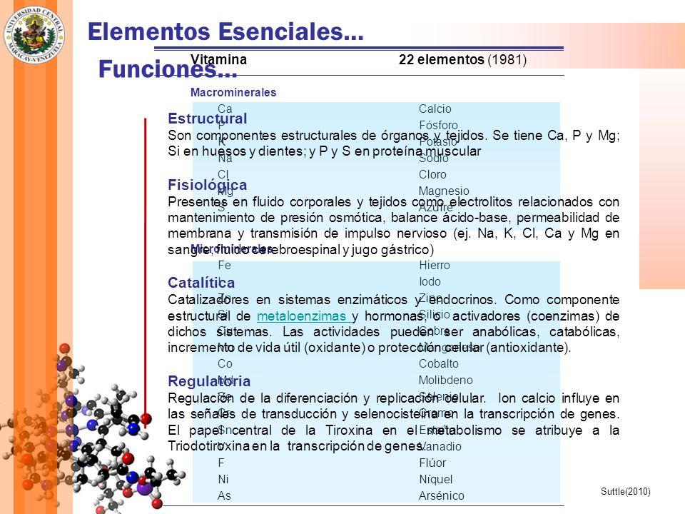 Elementos Esenciales… Funciones…