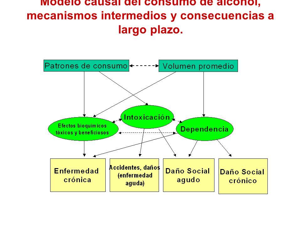 Modelo causal del consumo de alcohol, mecanismos intermedios y consecuencias a largo plazo.