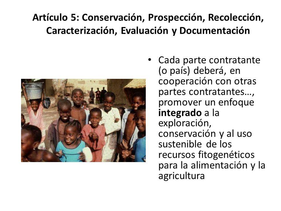 Artículo 5: Conservación, Prospección, Recolección, Caracterización, Evaluación y Documentación