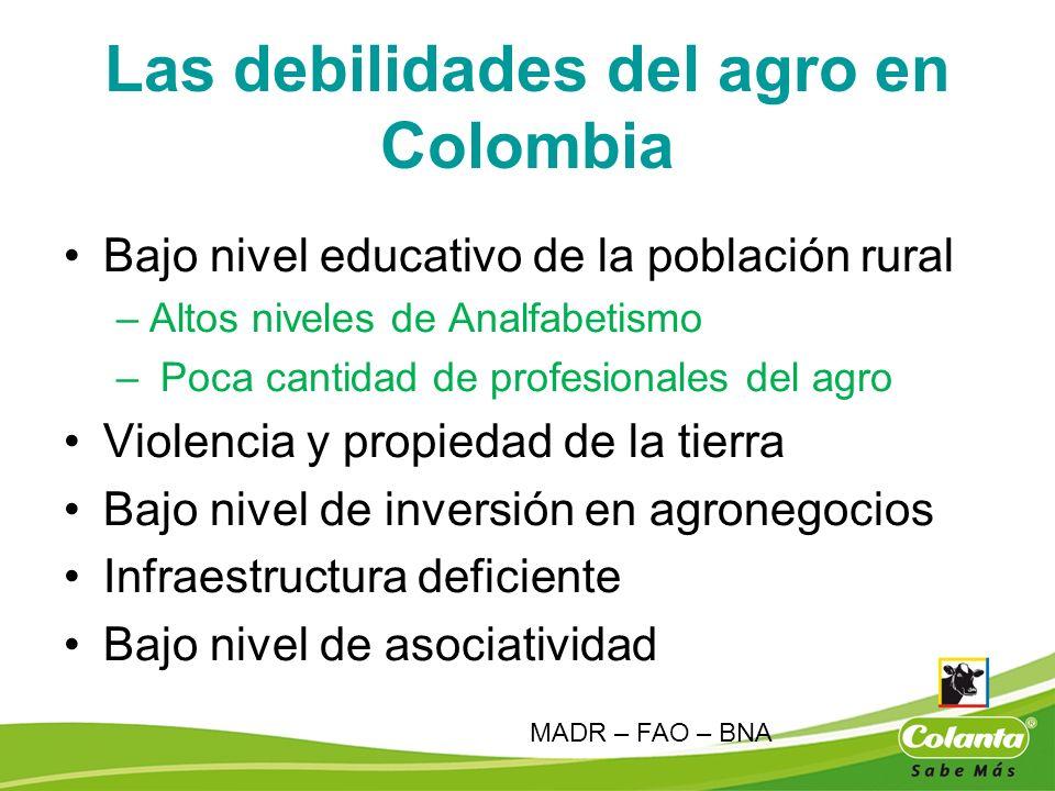 Las debilidades del agro en Colombia