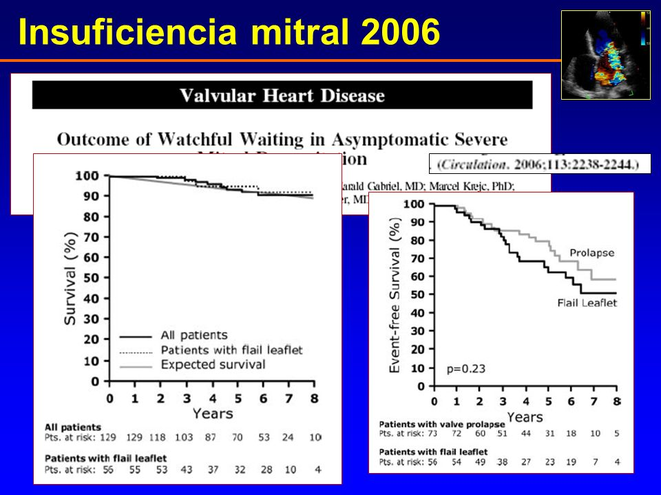 Insuficiencia mitral 2006