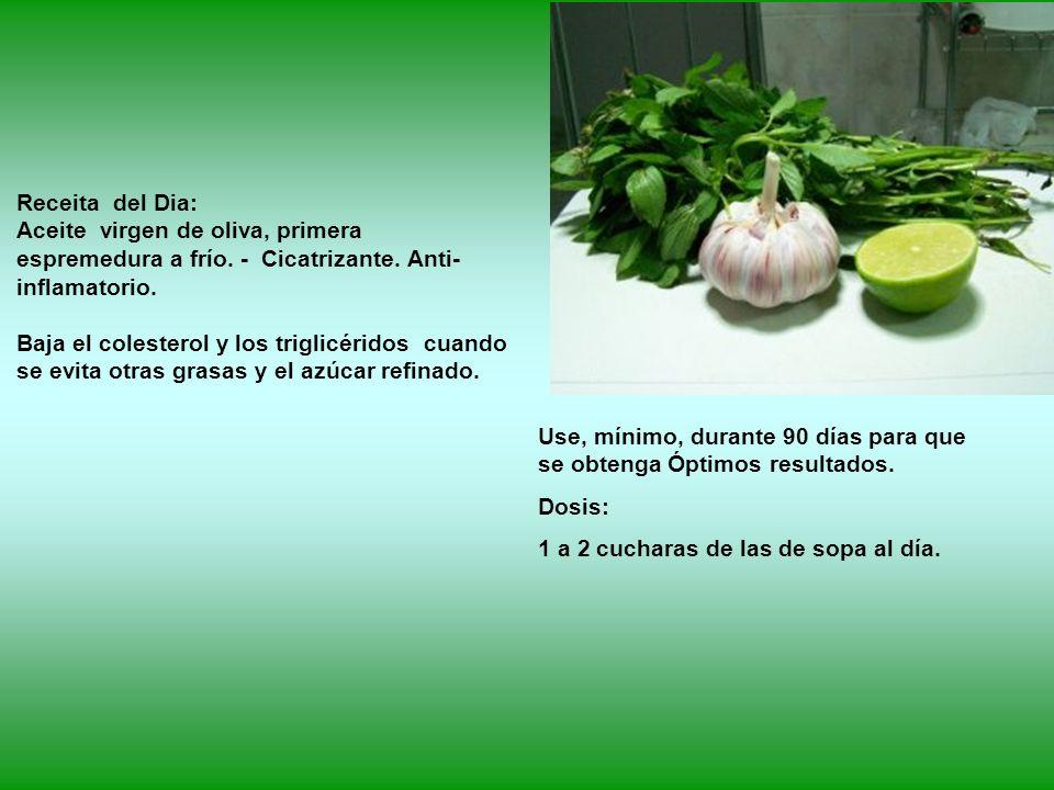 Receita del Dia: Aceite virgen de oliva, primera espremedura a frío