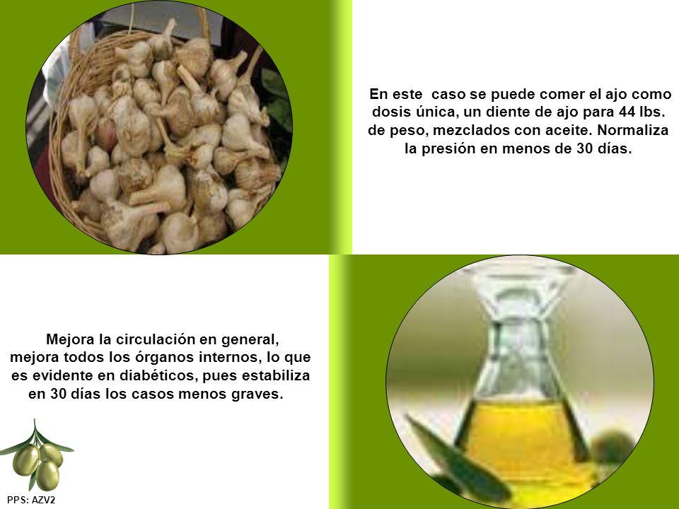 En este caso se puede comer el ajo como dosis única, un diente de ajo para 44 lbs. de peso, mezclados con aceite. Normaliza la presión en menos de 30 días.