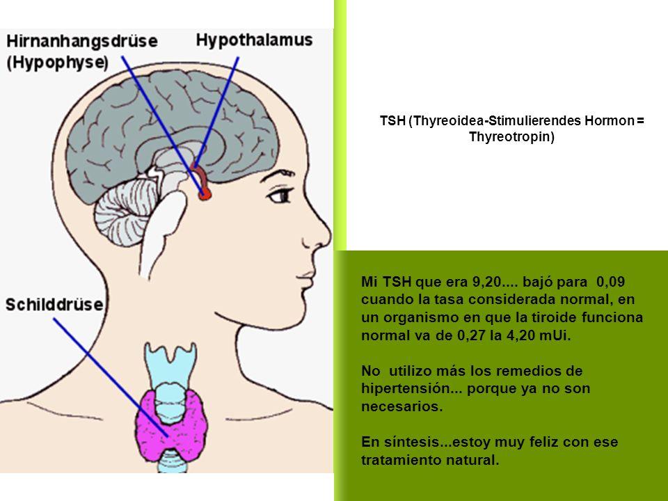 TSH (Thyreoidea-Stimulierendes Hormon = Thyreotropin)