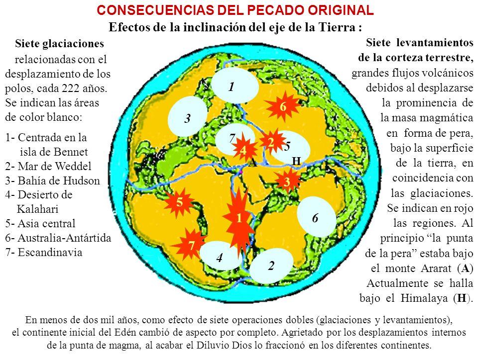 CONSECUENCIAS DEL PECADO ORIGINAL