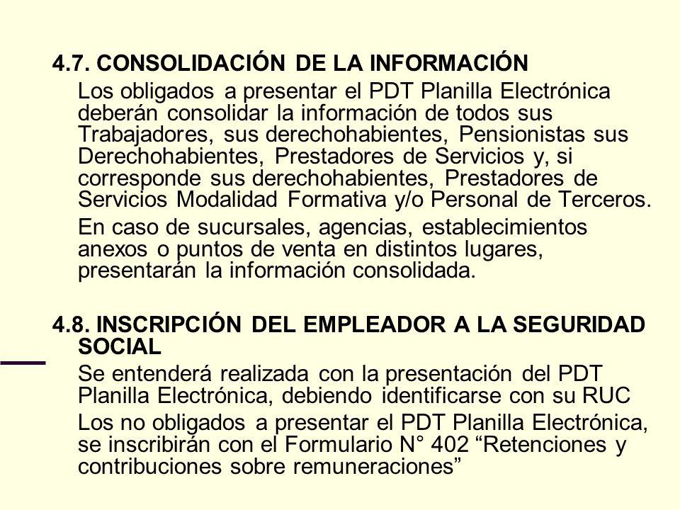 4.7. CONSOLIDACIÓN DE LA INFORMACIÓN