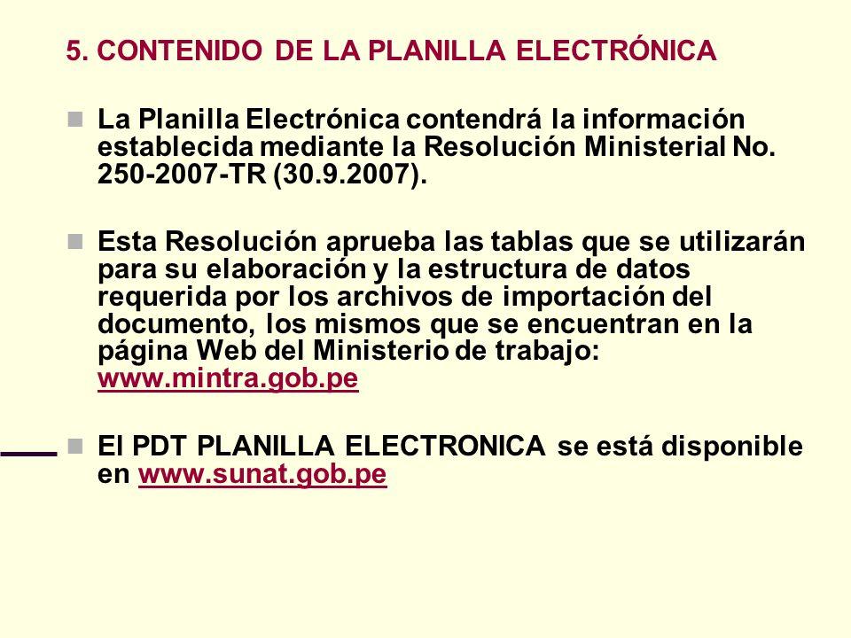 5. CONTENIDO DE LA PLANILLA ELECTRÓNICA