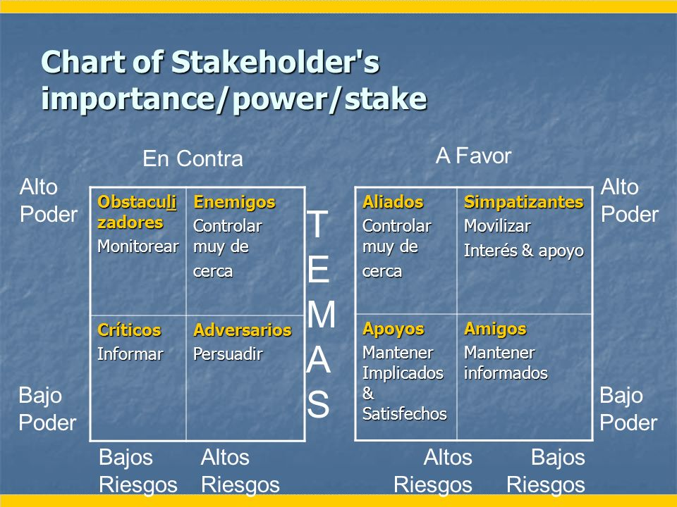 Chart of Stakeholder s importance/power/stake