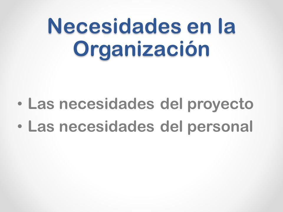Necesidades en la Organización