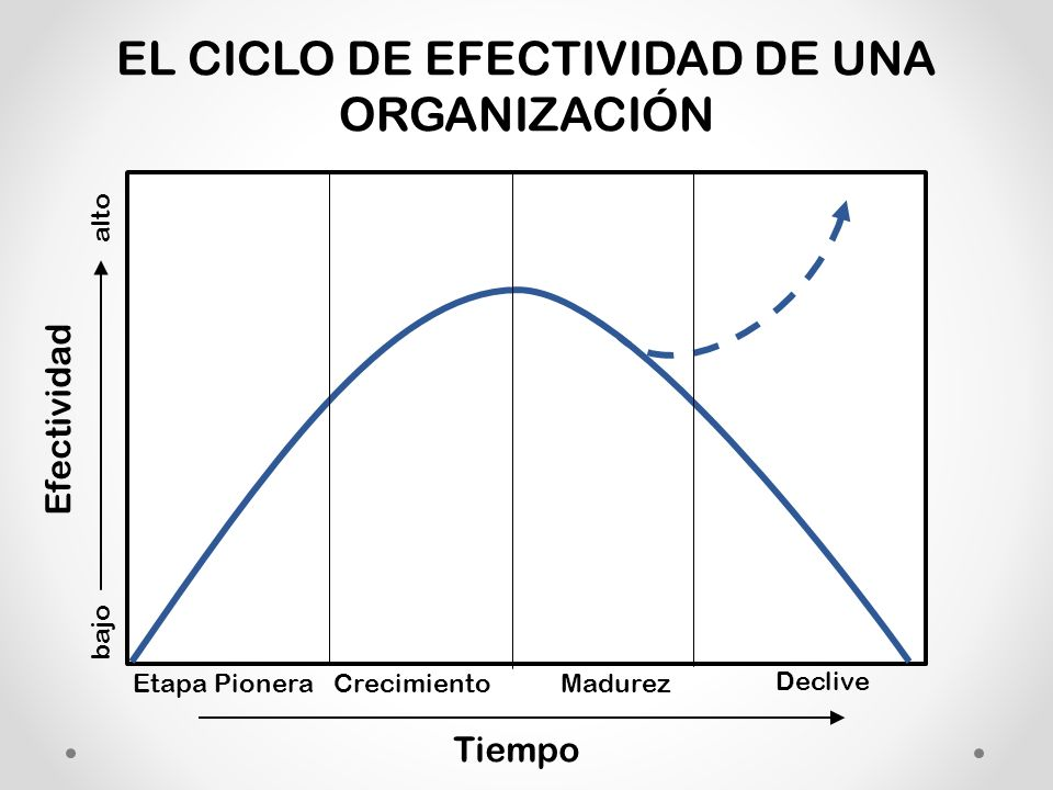 EL CICLO DE EFECTIVIDAD DE UNA ORGANIZACIÓN