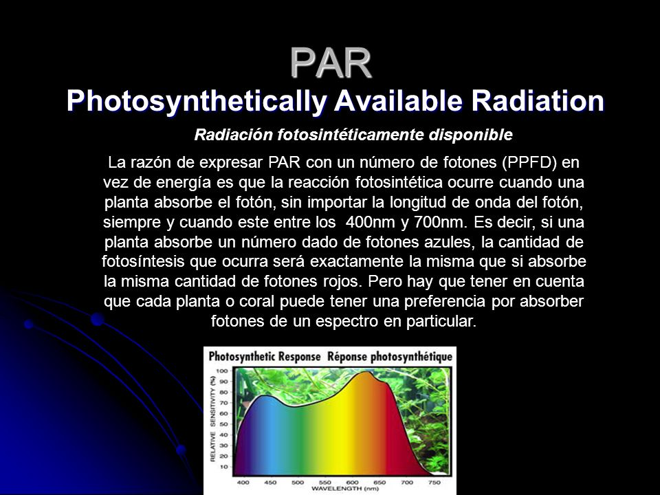 Photosynthetically Available Radiation