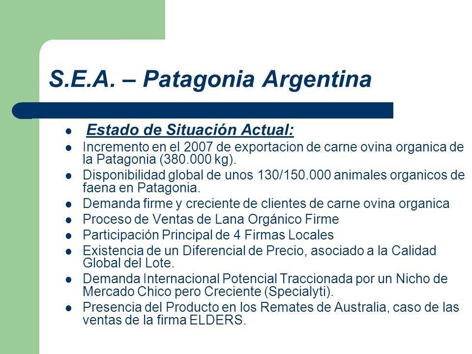 S.E.A. – Patagonia Argentina
