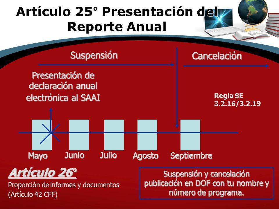 Artículo 25° Presentación del Reporte Anual