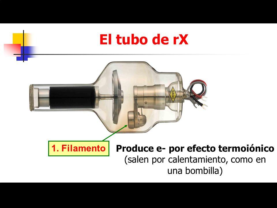 El tubo de rX1.Filamento.