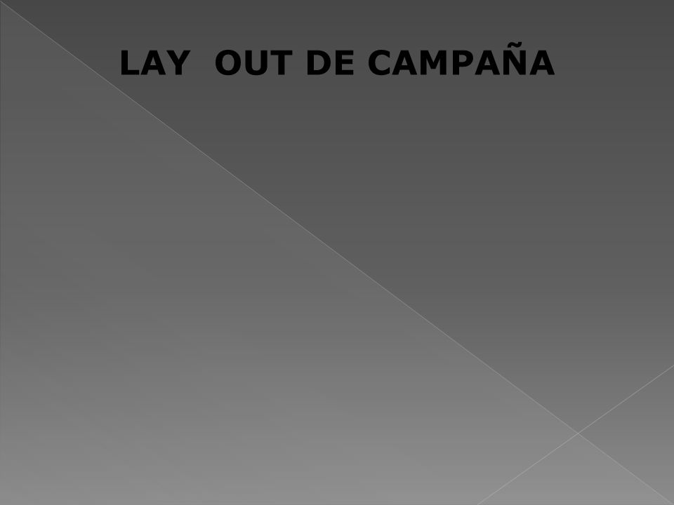 LAY OUT DE CAMPAÑA 36