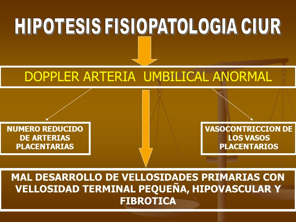 DOPPLER ARTERIA UMBILICAL ANORMAL