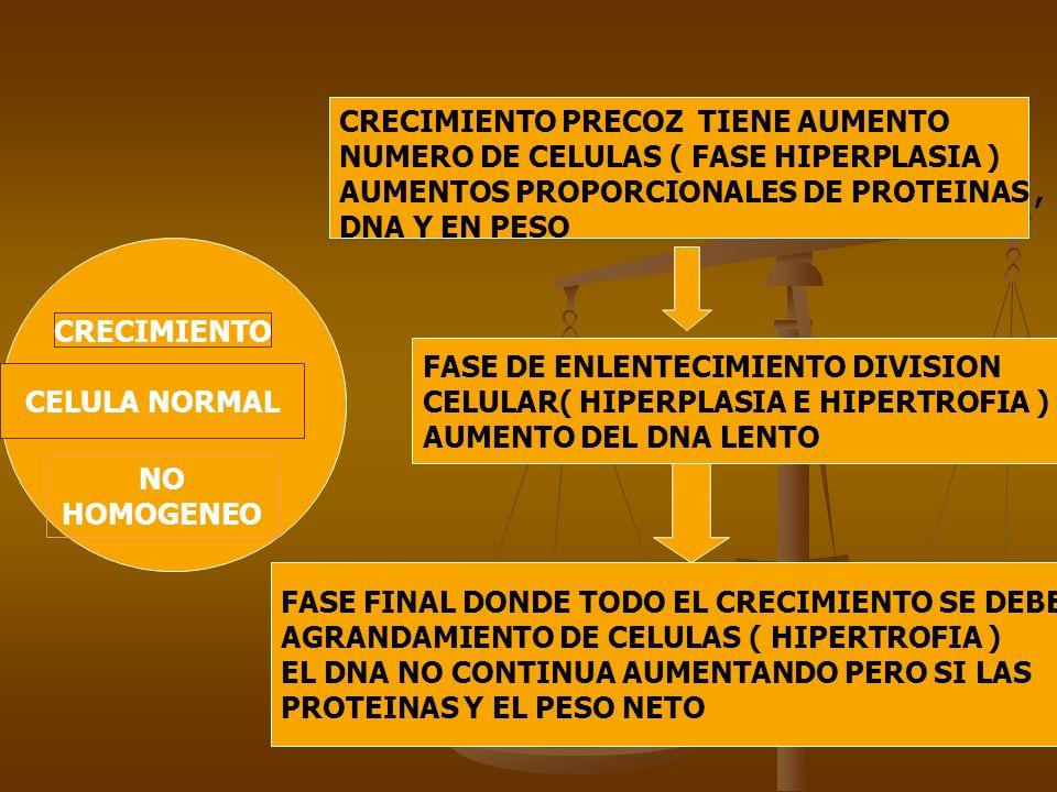 CRECIMIENTO PRECOZ TIENE AUMENTO NUMERO DE CELULAS ( FASE HIPERPLASIA )