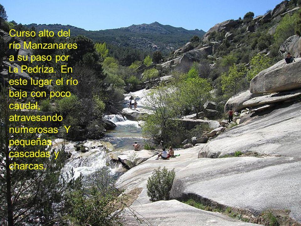 Curso alto del río Manzanares a su paso por La Pedriza