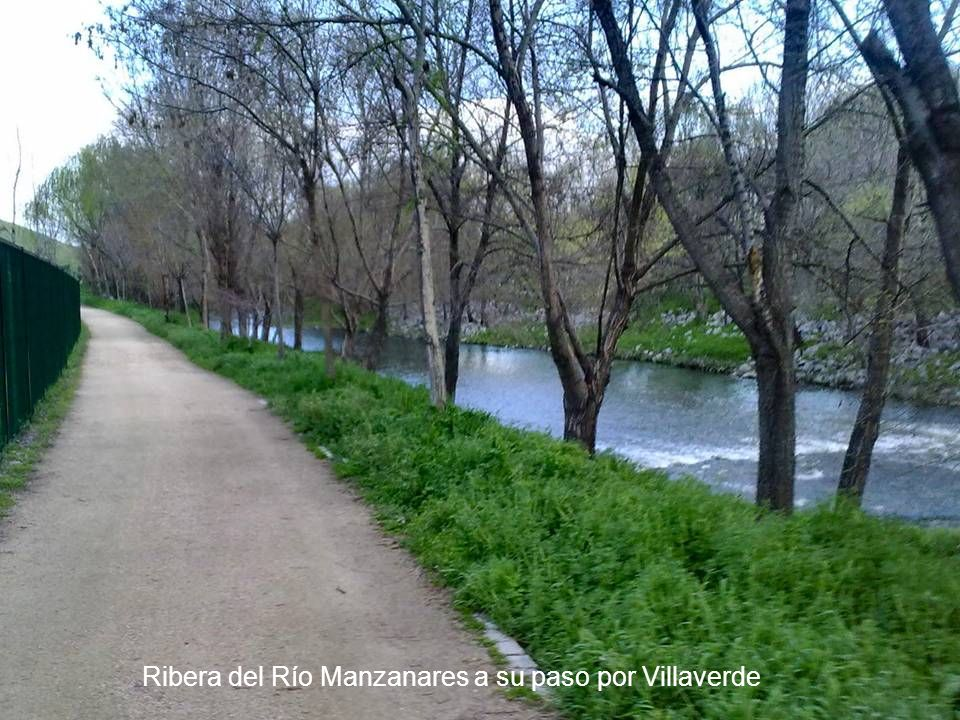 Ribera del Río Manzanares a su paso por Villaverde
