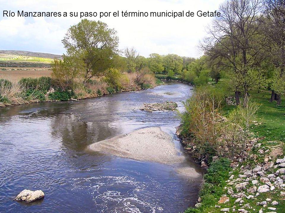 Río Manzanares a su paso por el término municipal de Getafe.