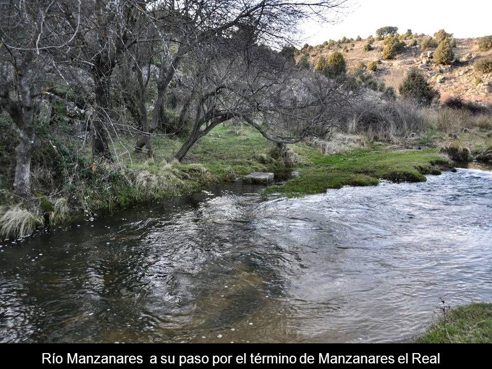 La Pedriza Río Manzanares a su paso por el término de Manzanares el Real