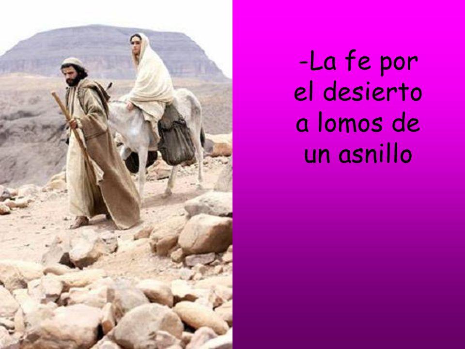 -La fe por el desierto a lomos de un asnillo