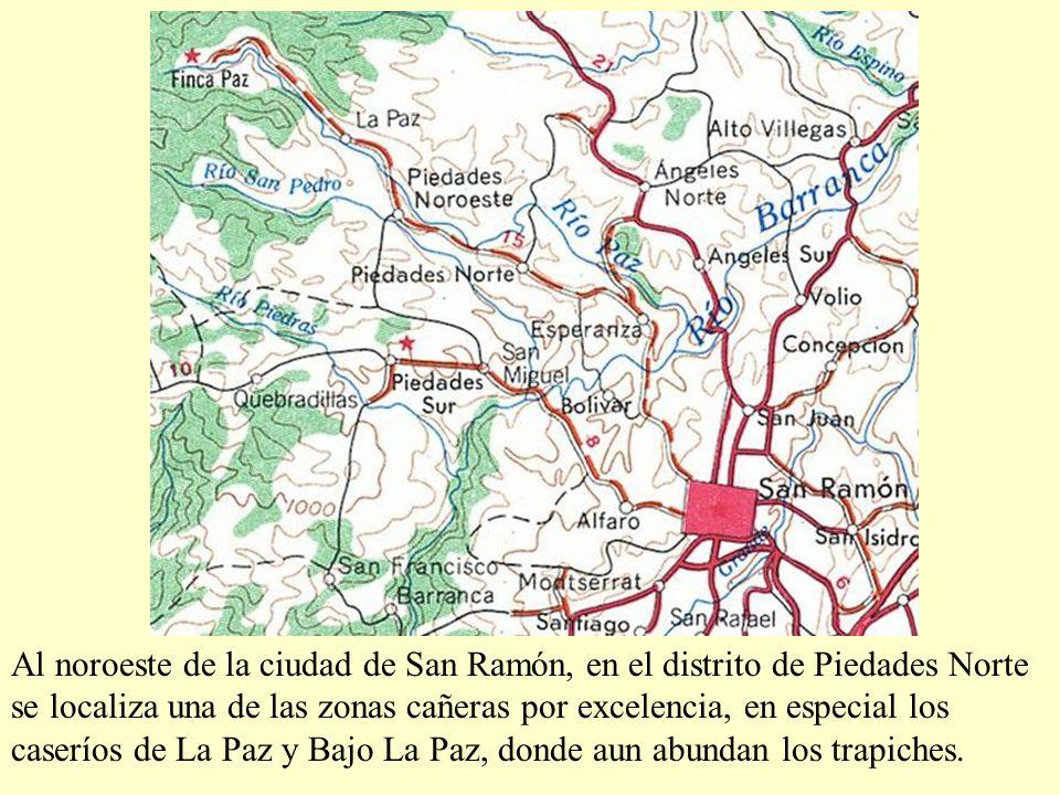 Al noroeste de la ciudad de San Ramón, en el distrito de Piedades Norte se localiza una de las zonas cañeras por excelencia, en especial los caseríos de La Paz y Bajo La Paz, donde aun abundan los trapiches.