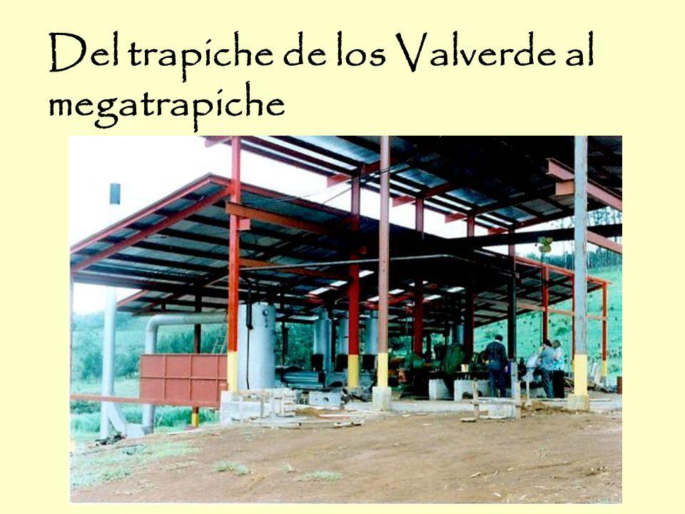 Del trapiche de los Valverde al megatrapiche