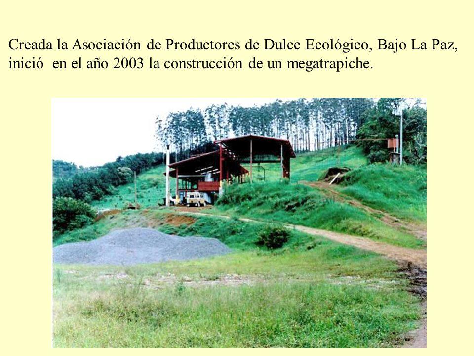 Creada la Asociación de Productores de Dulce Ecológico, Bajo La Paz,