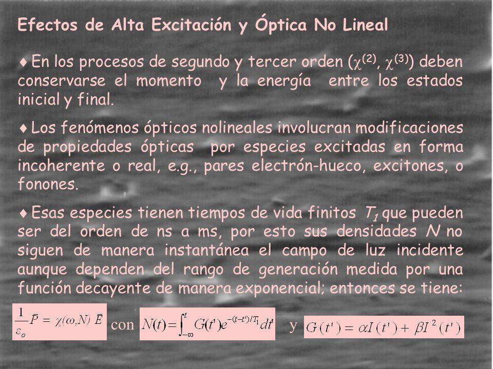 Efectos de Alta Excitación y Óptica No Lineal