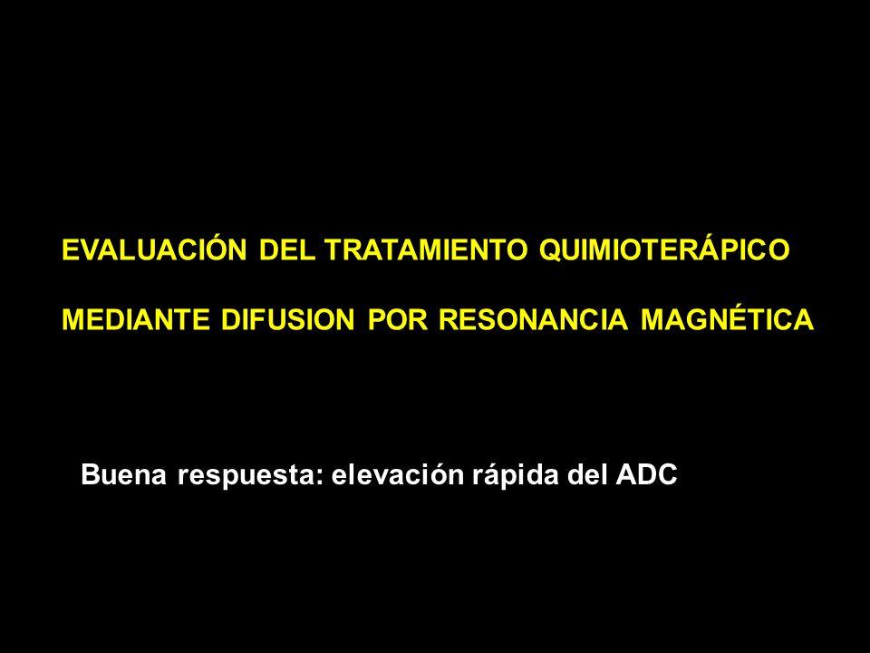 EVALUACIÓN DEL TRATAMIENTO QUIMIOTERÁPICO