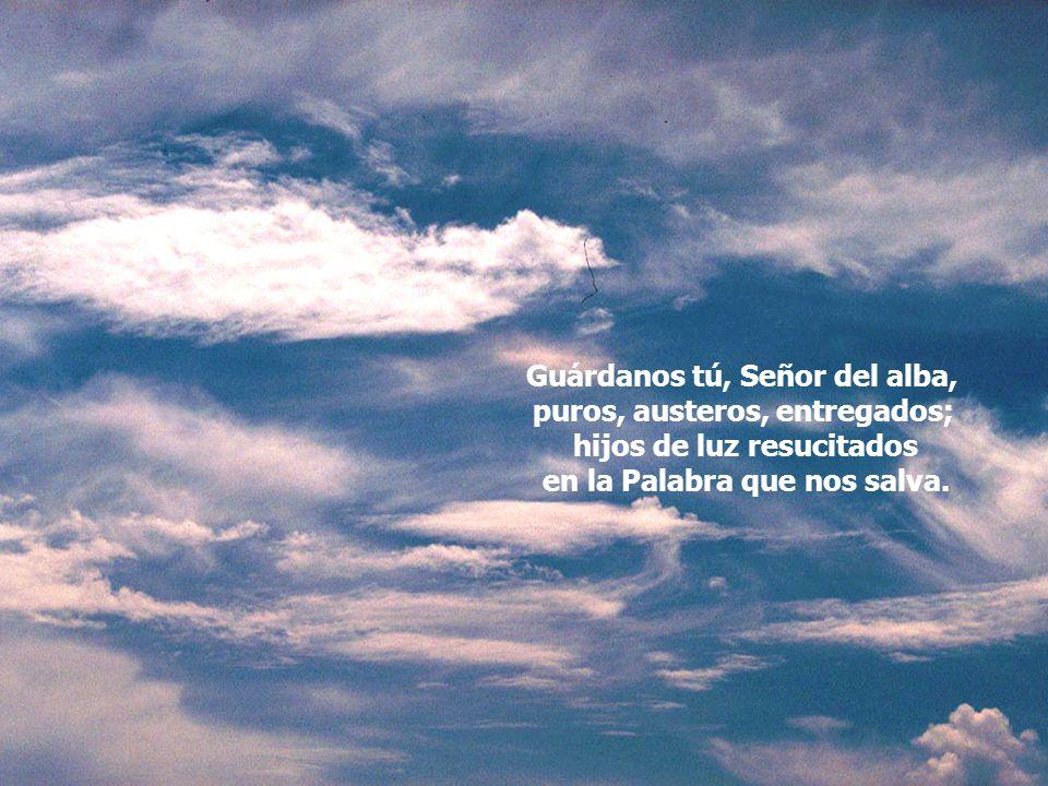Guárdanos tú, Señor del alba, puros, austeros, entregados;