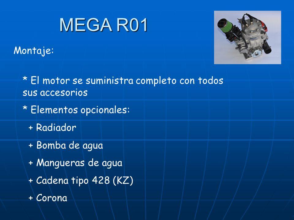 MEGA R01 Montaje: * El motor se suministra completo con todos sus accesorios. * Elementos opcionales: