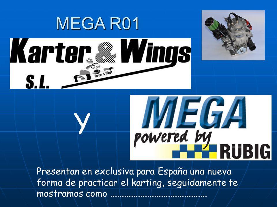 MEGA R01 Y.