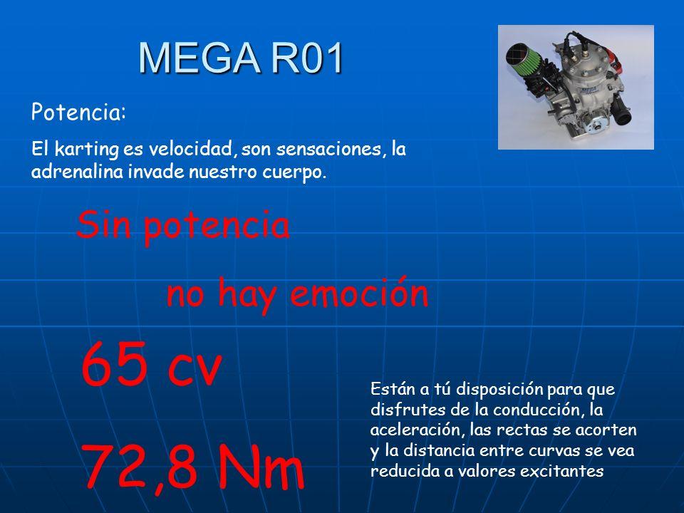 65 cv 72,8 Nm MEGA R01 Sin potencia no hay emoción Potencia: