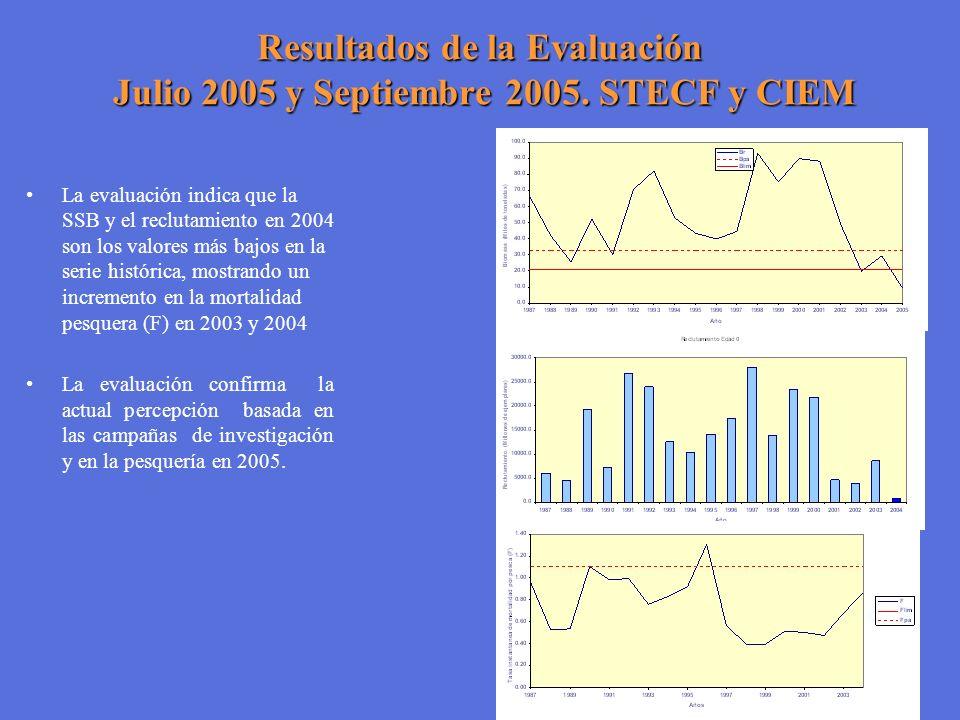 Resultados de la Evaluación Julio 2005 y Septiembre 2005. STECF y CIEM