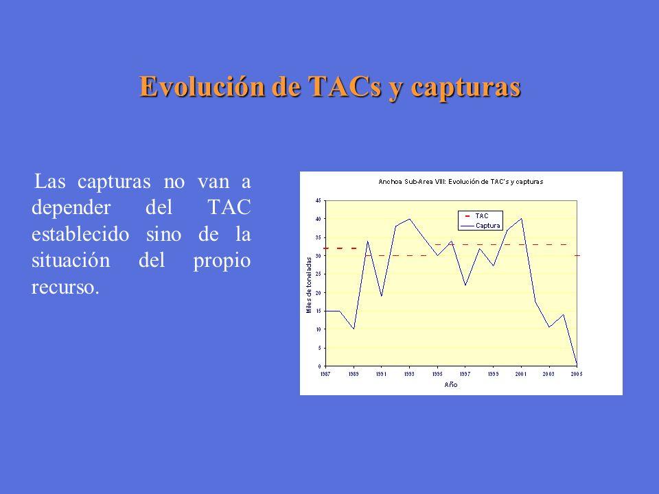 Evolución de TACs y capturas