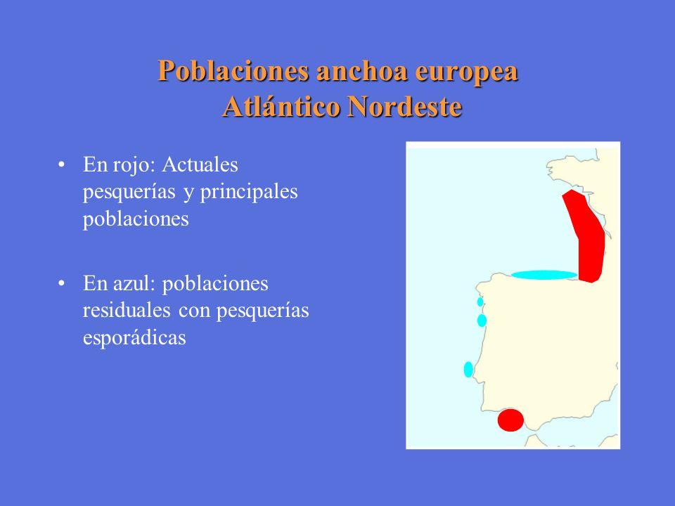 Poblaciones anchoa europea Atlántico Nordeste