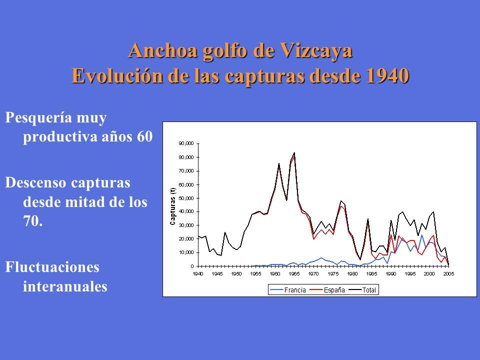 Anchoa golfo de Vizcaya Evolución de las capturas desde 1940