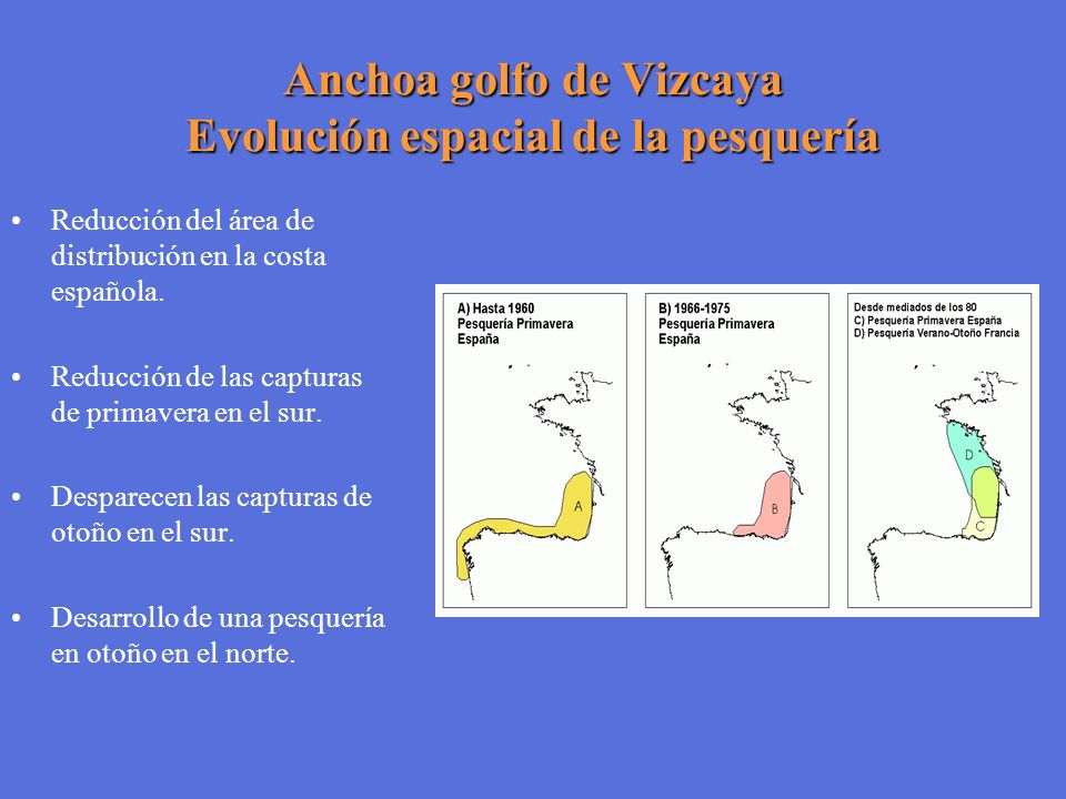Anchoa golfo de Vizcaya Evolución espacial de la pesquería