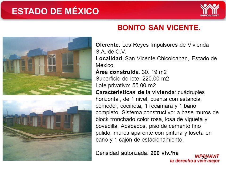 ESTADO DE MÉXICO BONITO SAN VICENTE.