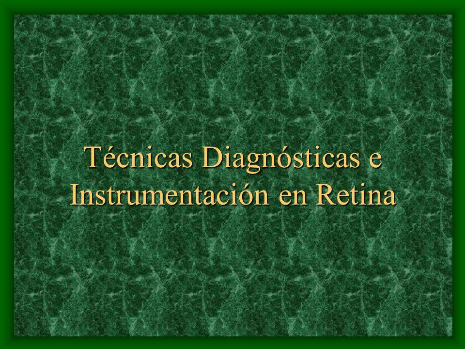 Técnicas Diagnósticas e Instrumentación en Retina
