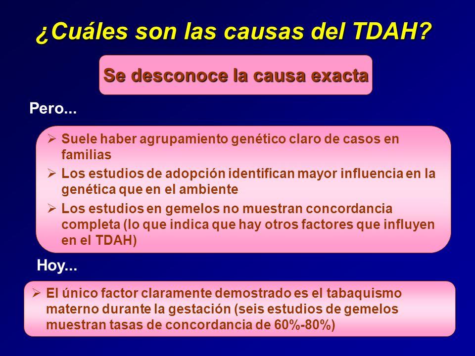 ¿Cuáles son las causas del TDAH Se desconoce la causa exacta