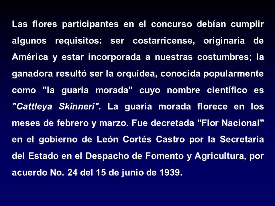 Las flores participantes en el concurso debían cumplir algunos requisitos: ser costarricense, originaria de América y estar incorporada a nuestras costumbres; la ganadora resultó ser la orquídea, conocida popularmente como la guaria morada cuyo nombre científico es Cattleya Skinneri .