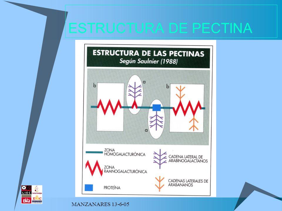 ESTRUCTURA DE PECTINA MANZANARES 13-6-05