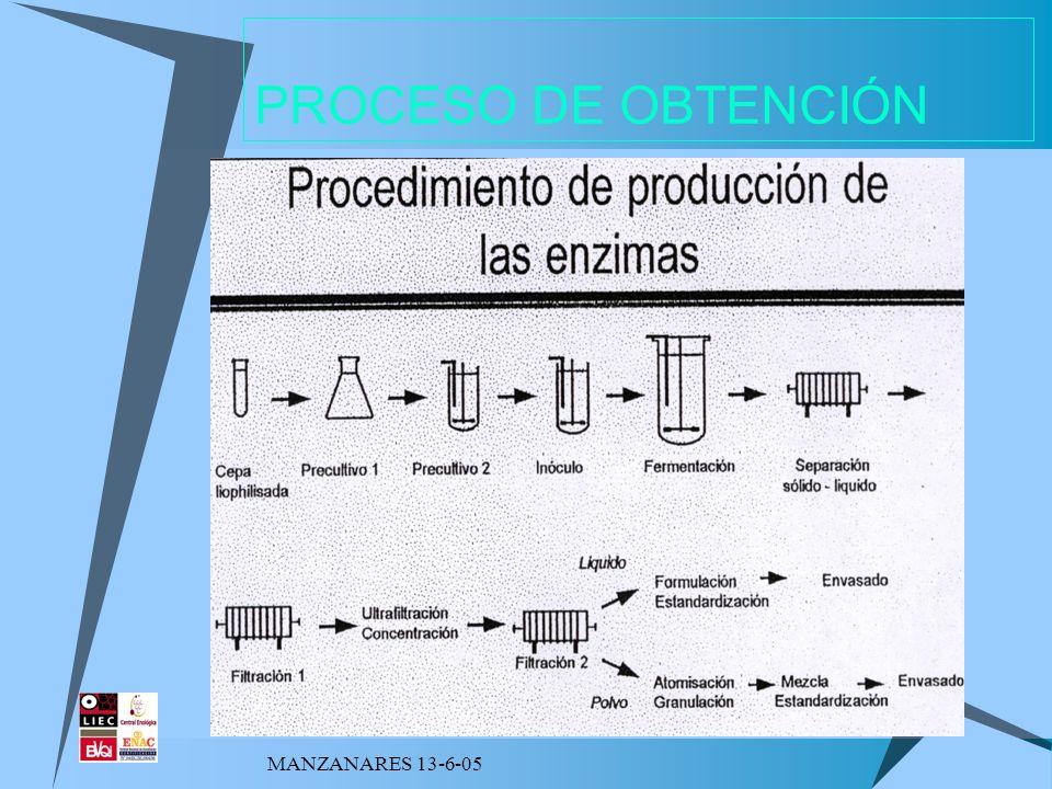 PROCESO DE OBTENCIÓN MANZANARES 13-6-05